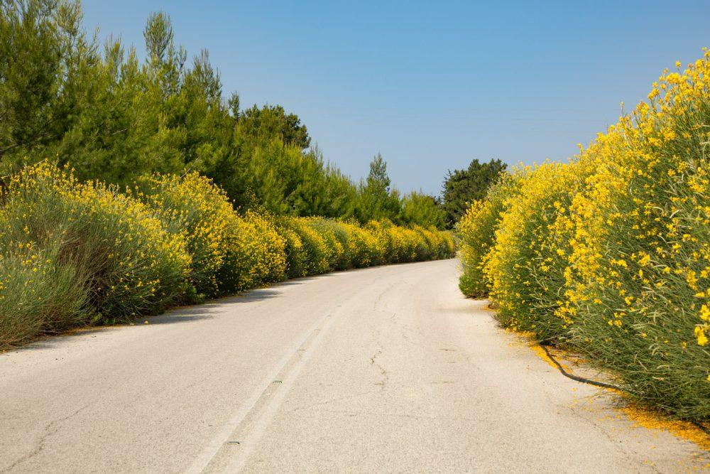 In de lente kan Rhodos erg kleurrijk zijn.